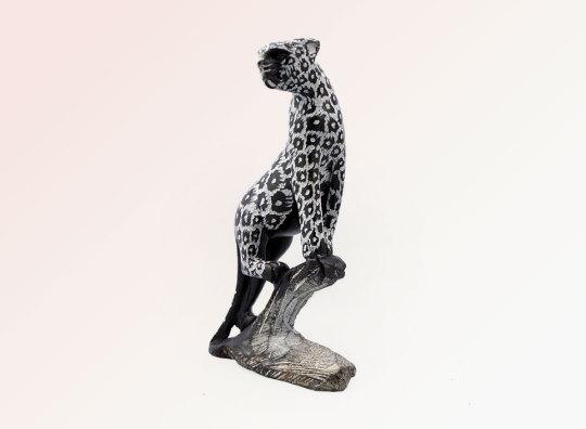 Seeking African Leopard